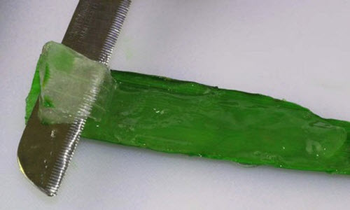 Cẩn thận bóc gel nha đam từ lá.
