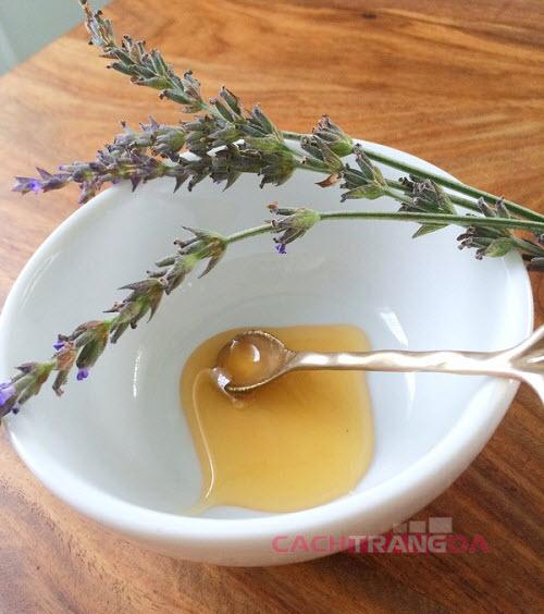 Cách trị mụn trứng cá bằng Tinh dầu oải hương và mật ong