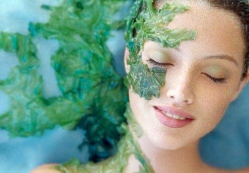 Bí đao giúp chị em trị nám da mặt hiệu quả, mang lại làn da trắng sáng và căng mịn