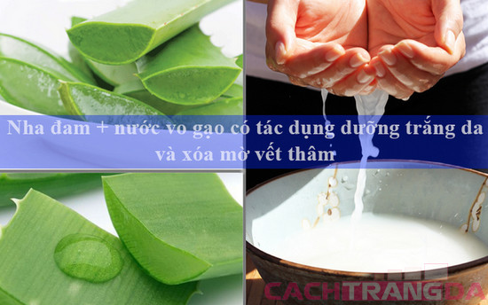 Nha đam + nước vo gạo có tác dụng dưỡng trắng da và xóa mờ vết thâm